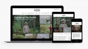 Responsive design If not us then who website